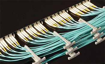low-loss-multifiber-connectivity