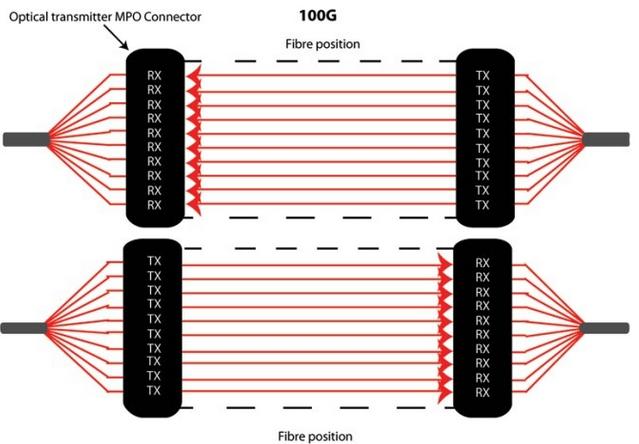 MTP 100G