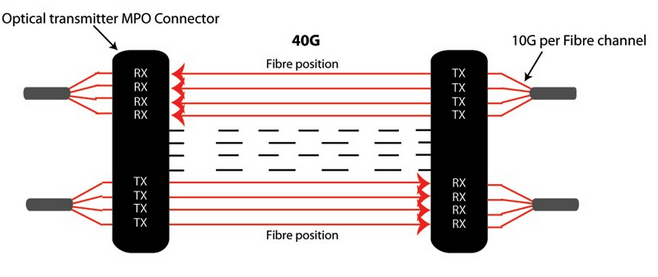 MTP 40G