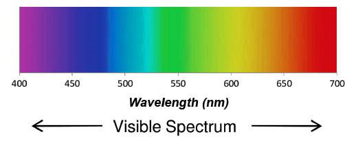 wavelength-nm