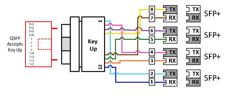 Polarity Drawing for Direct Connectivity Solutions