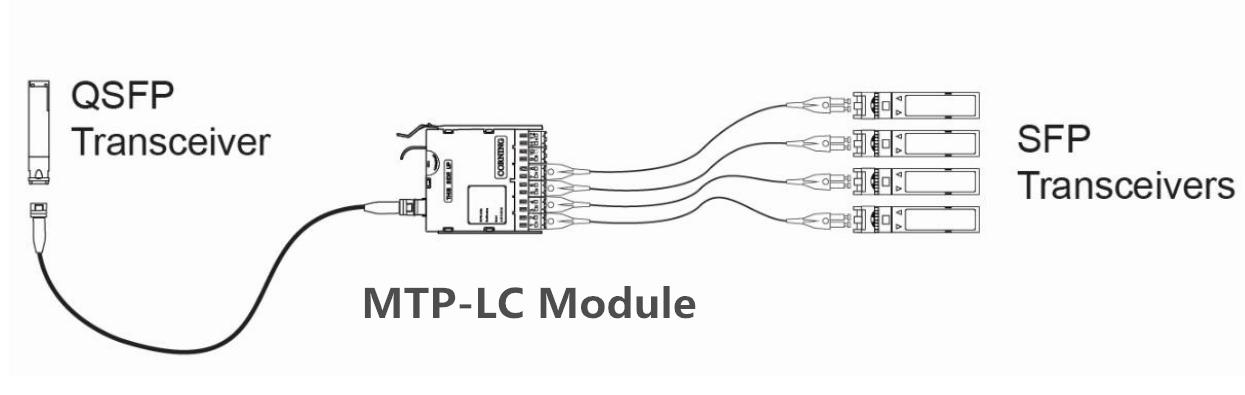 SFP+ QSFP+ Interconnect Solutions