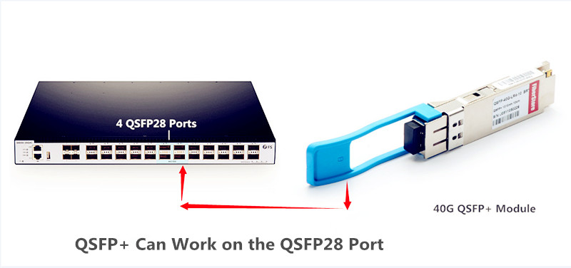QSFP can work on the QSFP28 ports